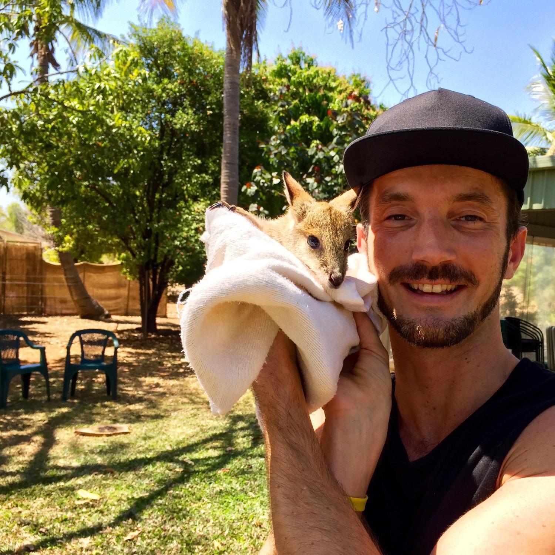 Das süßeste Ding der Welt, ein Wallaby Baby