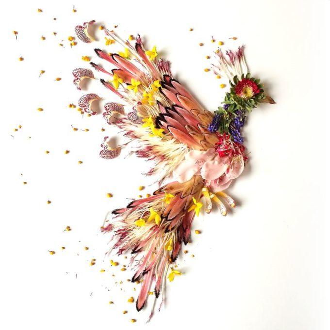 floraforagerfirebird-584b37d0e7649__700