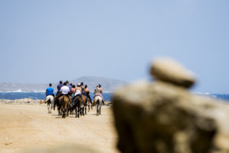 horseback-riding_-group-view-from-the-back